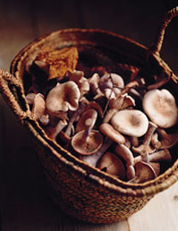 Sausage, Lentils and Fungi