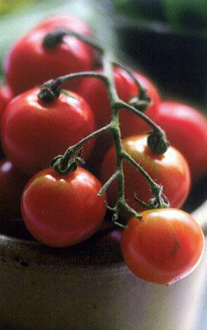 Fagiolini al Pomodoro