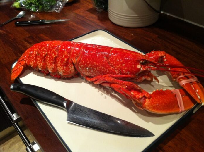 Serve Lobster this Christmas